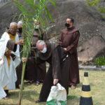 No dia de São Francisco, frades plantam árvores no Convento